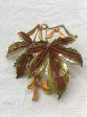 Exquisite Sycamore Pin 1960's - signed leaf brooch